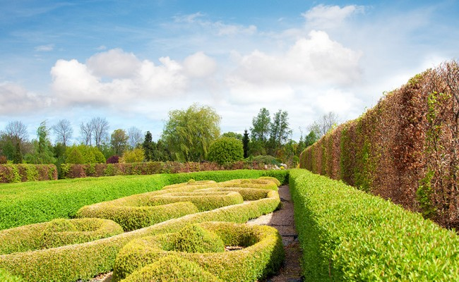 Tranquil Formal Garden in spring
